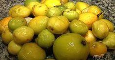 Aprenda a fazer sorvete de mangaba, fruta nativa do cerrado e da caatinga
