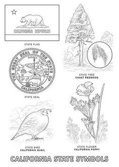 Coloriage - Symboles de l'Etat de Californie. Catégories: Californie. Coloriages gratuits à imprimer avec une variété de thèmes que vous pouvezimprimer et colorier.