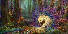 Spirit Bear - Simon Haiduk