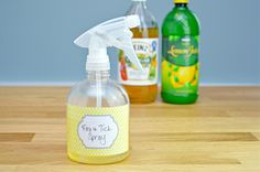 31 Brilliantly Clever Cat Hacks DIY Cat HAnHomemade flea repellent for your home DIY Homemade flea reBless The Food Before Us Wall Decal Bless The Food Before UHow to Make a Homemade Flea and Tick Repellent Because ticks and fleas are not cute. Homemade Tick Repellent, Tick Repellent For Dogs, Insect Repellent, Flea Spray For House, Flea Spray For Cats, Dog Flea Remedies, Home Remedies For Fleas, Flea Remedy For Dogs, Tick Spray For Dogs