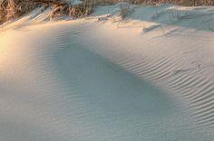 The Subtlety of Shadow by JC Findley, sand dune, sand dunes, beach,beaches,dune,dunes,long island,ny,newy york, nassau county, suffolk county, atlantic ocean, east coast, landscape, nature,natural,seascape,seaboard,jones beach, jone's beach, fire island, robert moses state park, national seashore, sunset,sunsets,sunrise,sunrises,texture, textures,textured, orange, after hurricane sandy, long island beaches, shadow, shadows