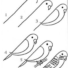 How To Draw A Flamingo For Kids Flamingo Fifth Pinterest