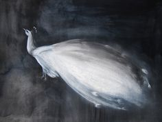 White Peacock by Christine Lindstrom on Artfully Walls