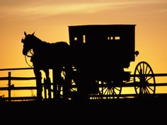 I just love the amish way of life!