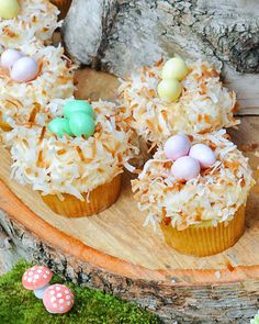 Vanilla cupcakes are dressed up for Easter with a sweet spring nest of toasted coconut and classic chocolate egg candies.
