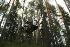 The Cabin. under construction on the site of Treehotel in the Swedish village of Harads, on July A lofty new hotel concept is set to open in a remote village in northern Sweden Glamping, Treehouse Hotel, Hotel Concept, Unusual Homes, Urban Planning, Under Construction, Health Benefits, Simple, Around The Worlds