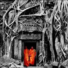 Ta Phrom - Cambodia