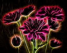This beautiful image would be perfect for any home or office. Glow effect achieved with Topaz Glow. Pink bouquet of Chrysanthemums.