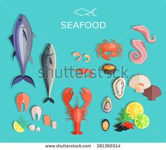 Seafood set design flat fish and crab. Seafood fish, seafood platter, lobster…