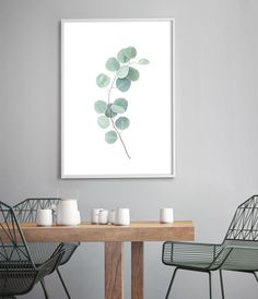 The Eucalyptus Print celebrates the beauty of Australia's native flora. Artwork Prints, Wall Art Prints, Leaf Photography, Black And White Wall Art, Plant Wall, Leaf Art, Beautiful Space, Leaf Prints, Botanical Prints