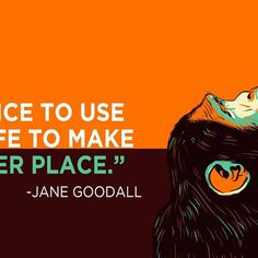 We have the choice to use the gift of our life to make the world a better place--or not to bother. #JaneGoodall  #meaningoflife #motivationalquotes #inspirationalquotes #dailyquotes #dailyquote #dailywisdom #instaquote #instagood #positivevibes #quoteoftheday #quotestoliveby #quotestagram #wordstoliveby #wordporn #qotd #enlightenment #blogging #transcendence#meditation #sciencequotes #frases #science #slay #philosophy#frasesbonitas #quotes #beyou#liveinthemoment#soulsearching…