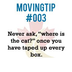 """Never ask, """"where is the cat?"""" once you have taped up every box.  www.greatcanadianvanlines.com Moving Tips, Never, Tape, Box, Moving Hacks, Duck Tape, Boxes, Ribbon, Moving House Tips"""