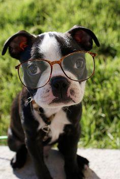 Geek Chic!!