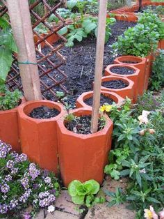awesome gardening tips and a cute idea.
