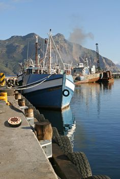 Cape Town harbour - you'll often catch seals lazily flipping about the harbour after the fishing boats come in. Travel Around The World, Around The Worlds, Le Cap, Cape Town South Africa, Port Elizabeth, Belle Villa, Most Beautiful Cities, Africa Travel, Fishing Boats