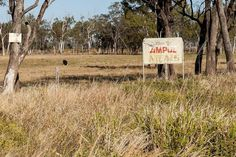 Australia: Getting on with it - Central Queensland farmers reflect on Cyclone Marcia one year on | PreventionWeb.net