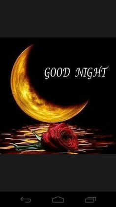 """Good night HD images : Hi viewers the most and popular wish is """"good night"""" after every morning sun set we people used to wish their l. Funny Good Night Photos, Good Night Msg, Good Night Love Quotes, Good Night I Love You, Romantic Good Night, Good Night Love Images, Good Night Prayer, Good Night Friends, Good Night Blessings"""