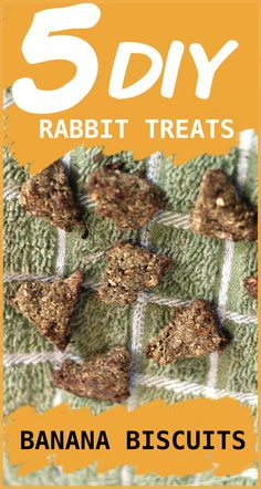 """So there's no way they won't love these cookie cutter treats. Make the """"dough"""" and create rabbit treats in whatever shape you want so you can give your rabbit some cute and yummy biscuits. Veggies For Rabbits, Meat Rabbits, Raising Rabbits, Bunny Rabbits, Rabbit Diet, Rabbit Farm, Rabbit Toys, Rabbit Cages, Homemade Rabbit Treats"""