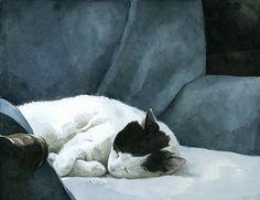 """Otis"" Sleeping cat watercolor by David Scheirer"