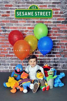 the gang's all here! | children | sesame street | Gina Rae Miller Photography » Long Island, New York