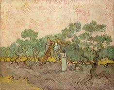 Van-Gogh La cueillette des olives