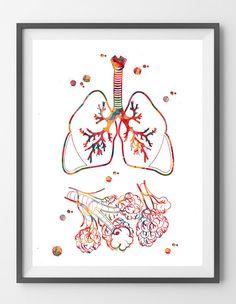 Pulmones y alvéolos acuarela imprimen sistema respiratorio