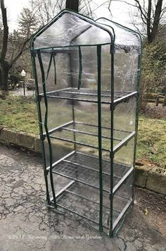 Starting Seeds in the Mini Greenhouse Outdoor Greenhouse, Portable Greenhouse, Mini Greenhouse, Outdoor Gardens, Gardening For Beginners, Gardening Tips, Lawn And Garden, Home And Garden, Herb Garden