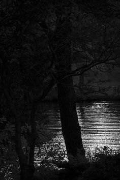 Sunset in black and white. Canada, Black And White, Sunset, Park, Ontario, Outdoor Decor, Black White, Blanco Y Negro, Parks