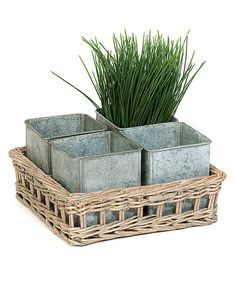 Another great find on #zulily! Willow Tray & Tin Pot Planter Set #zulilyfinds