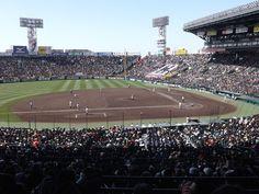 【THE INSIDE】いよいよ開幕「第89回選抜高等学校野球大会」…組み合わせから大会を展望