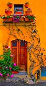 Love the color, the plants, the door and the vines <3