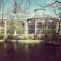 Botanical garden. Amsterdam. Photo by rebekahzoe