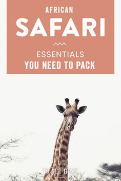 Planning what to pack for a safari in Africa can sometimes feel overwhelming, so I've put together this packing list for a safari in Africa to help you plan the perfect safari without worrying to much on what to pack and what to wear on safari! Kenya Travel, Africa Travel, Best Summer Vacations, Diani Beach, Packing List For Travel, Packing Tips, Travel Checklist, Animal Experiences, Trade Secret
