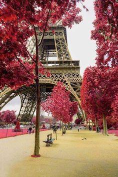 Champs du Mars Eiffel tower Red tree Paris photo Canvas print Wall decor Home decor Paris decor Paris canvas Gallery wrap Paris Torre Eiffel, Paris Eiffel Tower, Beautiful Paris, Paris Love, Pink Paris, Paris Decor, Paris Theme, Hotel Des Invalides, Paris Canvas