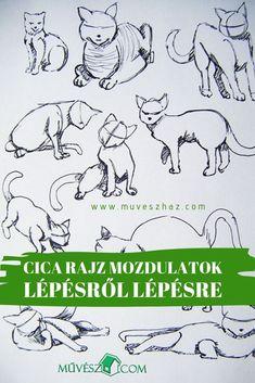 Cica rajzolás: mozdulatok. Tanuld meg a cica mozdulatok rajzolását lépésről lépésre és kreálj magadnak fejből képeket. :) Movies, Movie Posters, Art, Art Background, Films, Film Poster, Kunst, Cinema, Movie