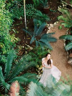 Lush cycads in a greenhouse provide the perfect landscape for this bride in her dreamy wedding dress. Photograph by Ashley Bosnick Photography, styled by @36thStreetEvents for @BridesofAustin. #thegreenhouseatdriftwood