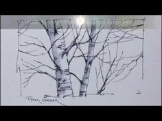 Tips and Techniques for drawing Better Tree trunks and Branches. Quick and Easy to Follow - YouTube