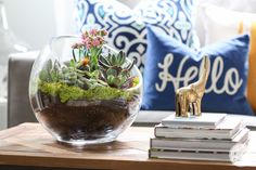 Now that spring has finally arrived, I have this almost-compulsive desire to start planting and playing in the dirt Because there's still a chance of frost around these parts until June, I have to pace myself. But how? The answer: create another indoor garden. When I was in California a few weeks ago, I came …