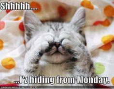 #Monday #laughter #humor #life #work #school