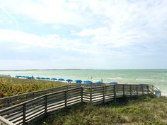 See why Honeymoon Island State Park's undeveloped beaches and gorgeous views has made it Florida's most visited state park the past 6 years. Honeymoon Island, Spring Training, Most Visited, 6 Years, State Parks, Islands, Palm, The Past, Florida