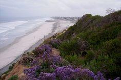 del mar, beaches, favorit place, carlsbad beach, camping, california, beauti, cousins, families