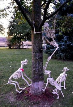 cheap diy halloween decorations 129 World's Insanest Scary Halloween Spukhaus Ideen - Haus Halloween Skeleton Decorations, Cheap Halloween Costumes, Halloween Tags, Halloween Displays, Creepy Halloween, Fall Halloween, Halloween Yard Ideas, Classy Halloween, Homemade Halloween
