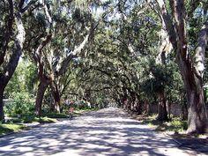 Magnolia Ave., St. Augustine, Florida