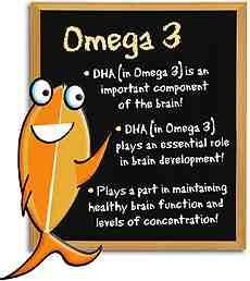 Wild Salmon is rich with omega 3. Good for the brain