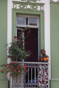 Depósito Santa Mariah: Traga Mais Verde Para Sua Casa!