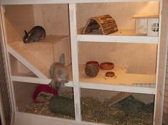 Perrine 160 Baubericht Kaninchenstall Vanessa 6