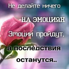 VK is the largest European social network with more than 100 million active users. Laws Of Life, Quotations, Life Quotes, Communication, Relationships, Motivational, Facebook, Frases, True Words