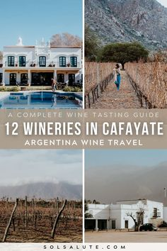 The Best Wineries in Cafayate Argentina | Cafayate wineries in Argentina | Mejores bodegas en Cafayate | Cafayate bodegas | Wine tasting in Cafayate | Wine Tasting in Argentina | Argentina wine regions | Things to do in Argentina | Northwest Argentina | South America wineries | Wine tasting in South America | Wine travel inspiration | Argentina travel | Wine regions in Argentina | Mendoza travel | Things to do in Salta Argentina | Things to do in Cafayate Argentina | Salta Argentina travel Bolivia Travel, Brazil Travel, Peru Travel, Wanderlust Travel, Argentina South America, Visit Argentina, Argentina Travel, Backpacking South America, South America Travel