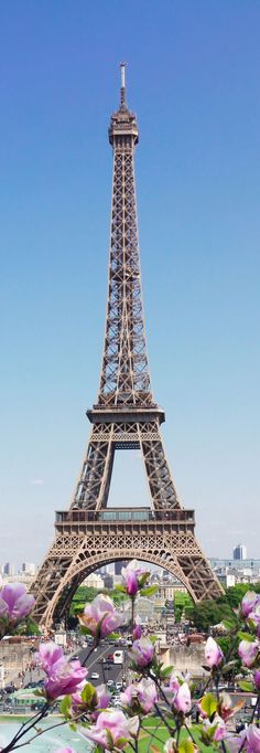 One of my Favorite Eiffel Tower pics!