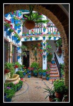 flores hasta en las caracolas (patios cordoba) ღღ Love the planters! puts a smile on my face :)) ~~~~ Cordoba, Spainღღ Love the planters! puts a smile on my face :)) ~~~~ Cordoba, Spain Spanish House, Spanish Style, Mexican Courtyard, Mexican Garden, Italian Courtyard, Mexican Patio, Indoor Courtyard, Spanish Courtyard, Courtyard Landscaping
